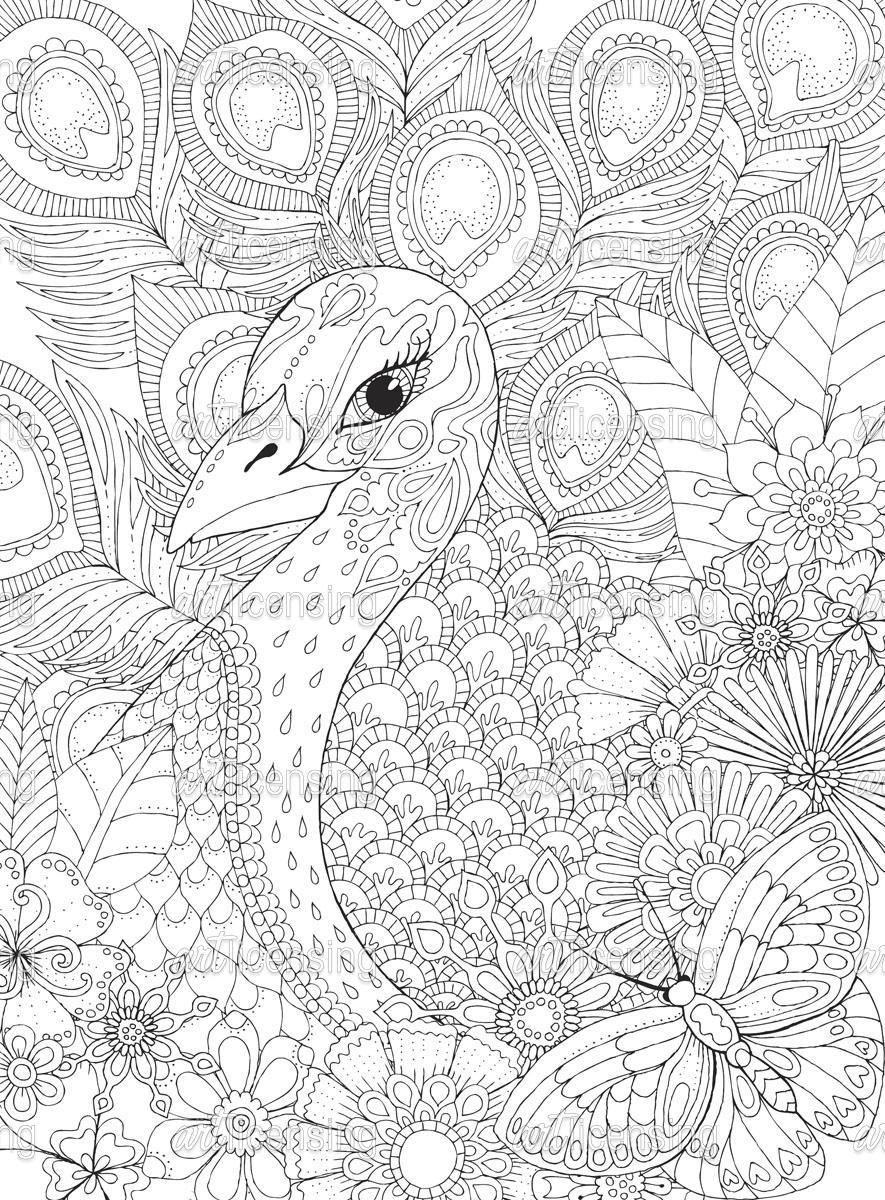 Helang175726 Jpg 885 1200 Peacock Coloring Pages Printable Adult Coloring Pages Mandala Coloring Pages
