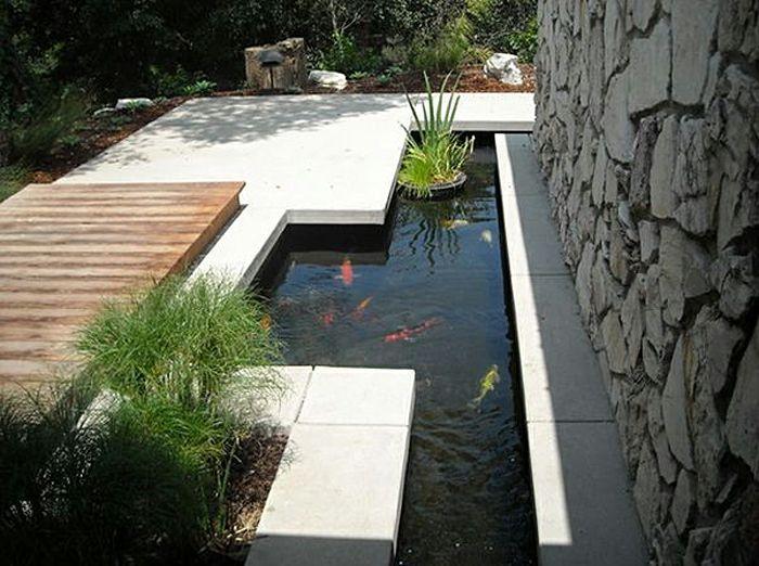ein teich voller goldenen fischen ein blumentopf der segelt moderne gartengestaltung - Moderne Gartengestaltung
