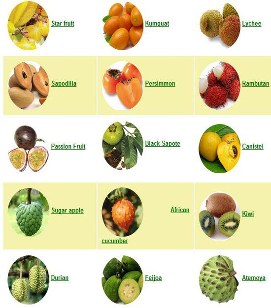 These exotic fruits can have major health and healing ...