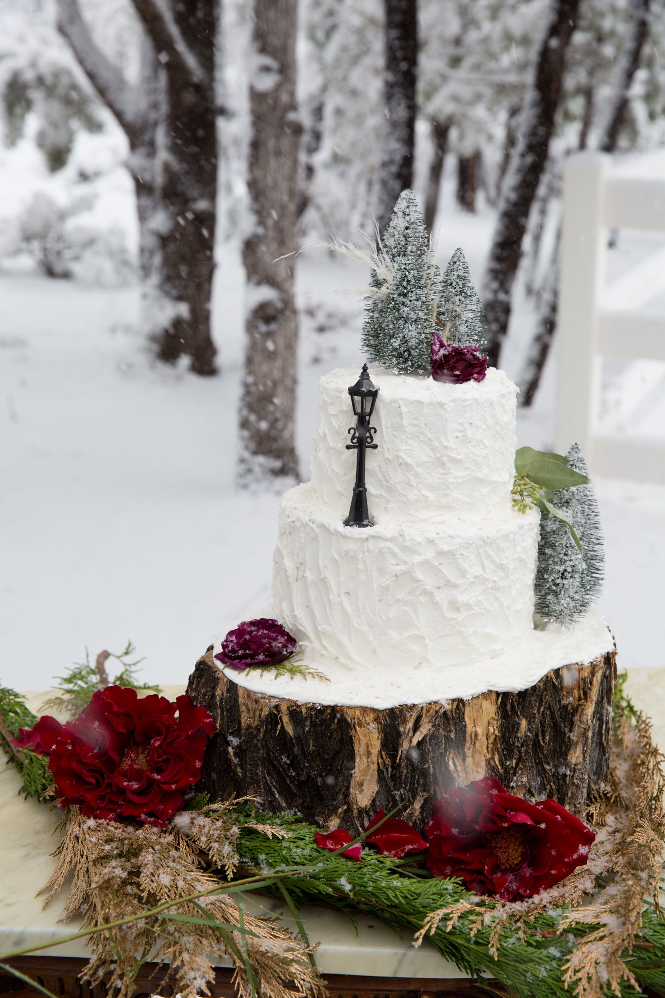 Winter wedding Cake Wedding Cakes in 2019 Wedding