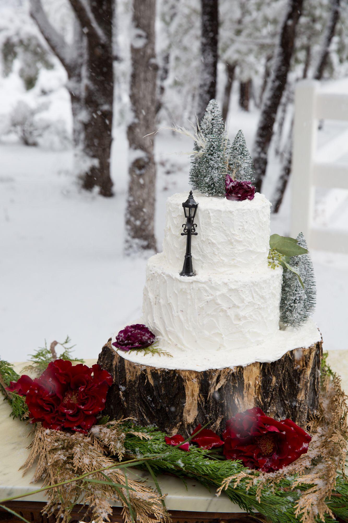 Winter wedding Cake | Wedding Cakes | Pinterest | Winter weddings ...
