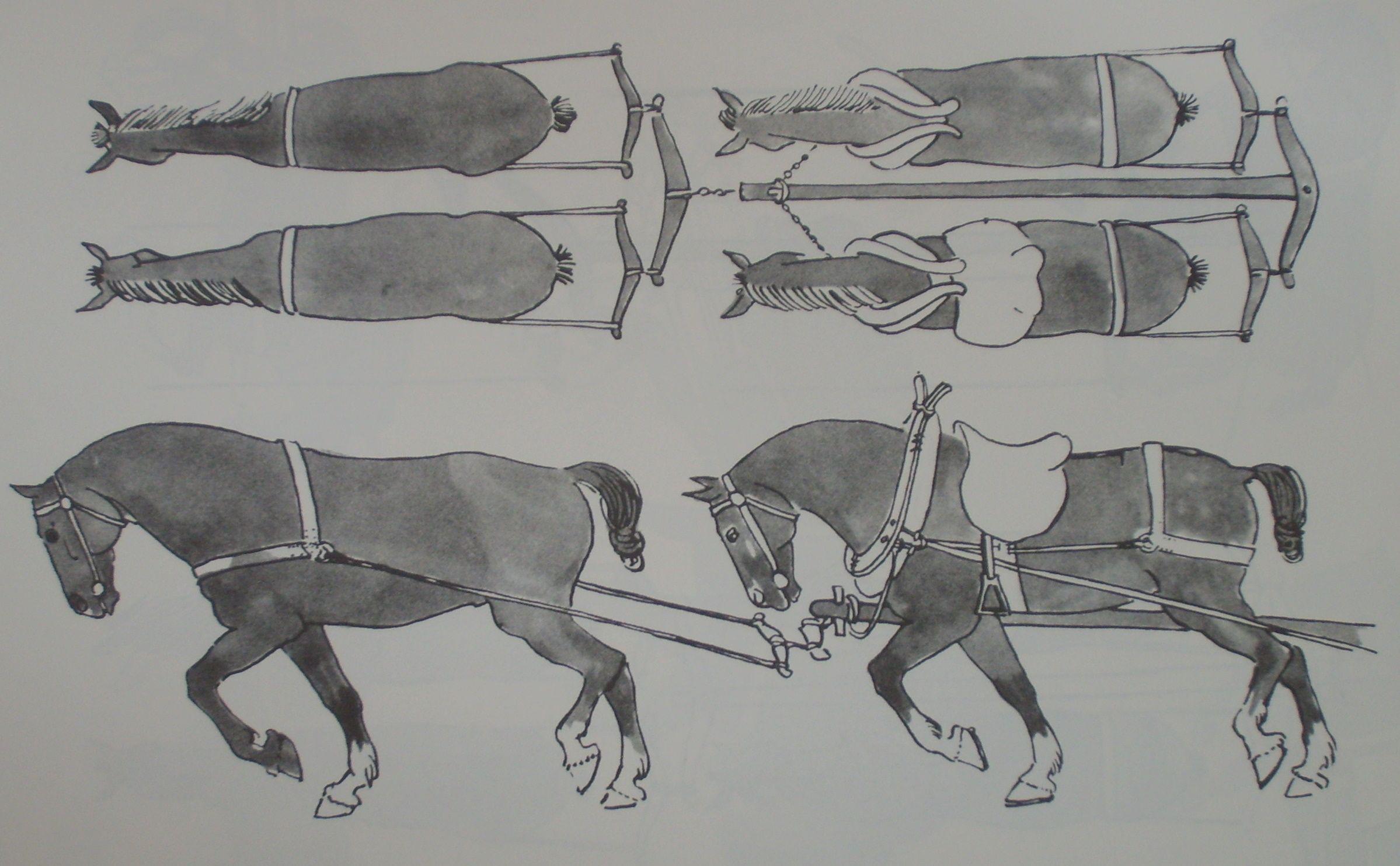 Breeching Tack Wikipedia The Free Encyclopedia Medieval Horse Horse Wagon Horse Harness