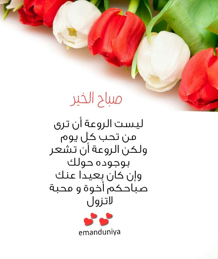صباحكم أخوة و محبة Cool Words Good Morning Morning Wish