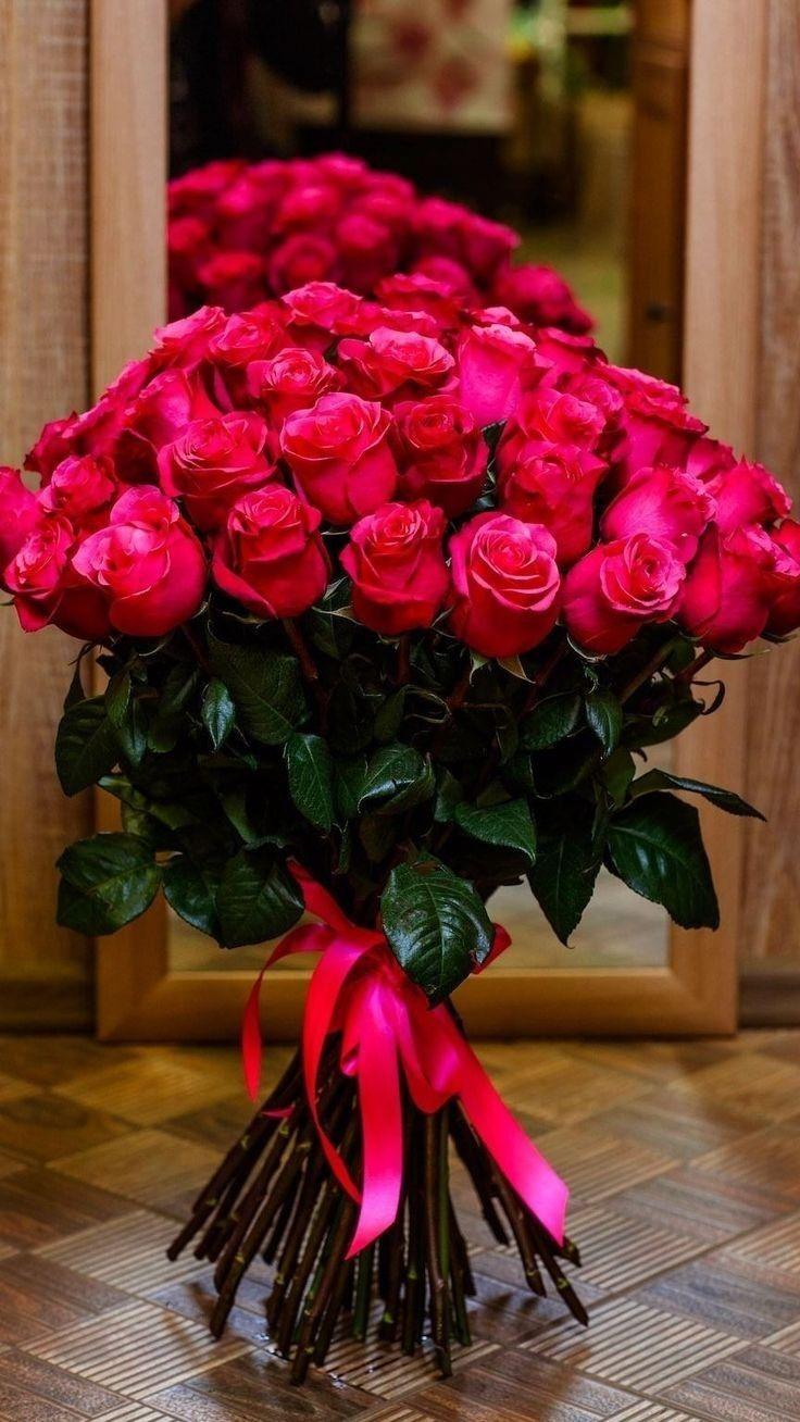 𝐆𝐎𝐎𝐃 𝐌𝐎𝐑𝐍𝐈𝐍𝐆 Beautiful rose flowers, Beautiful flowers