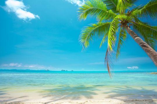 Tropical Island Beach Wallpaper Sunshine Mural