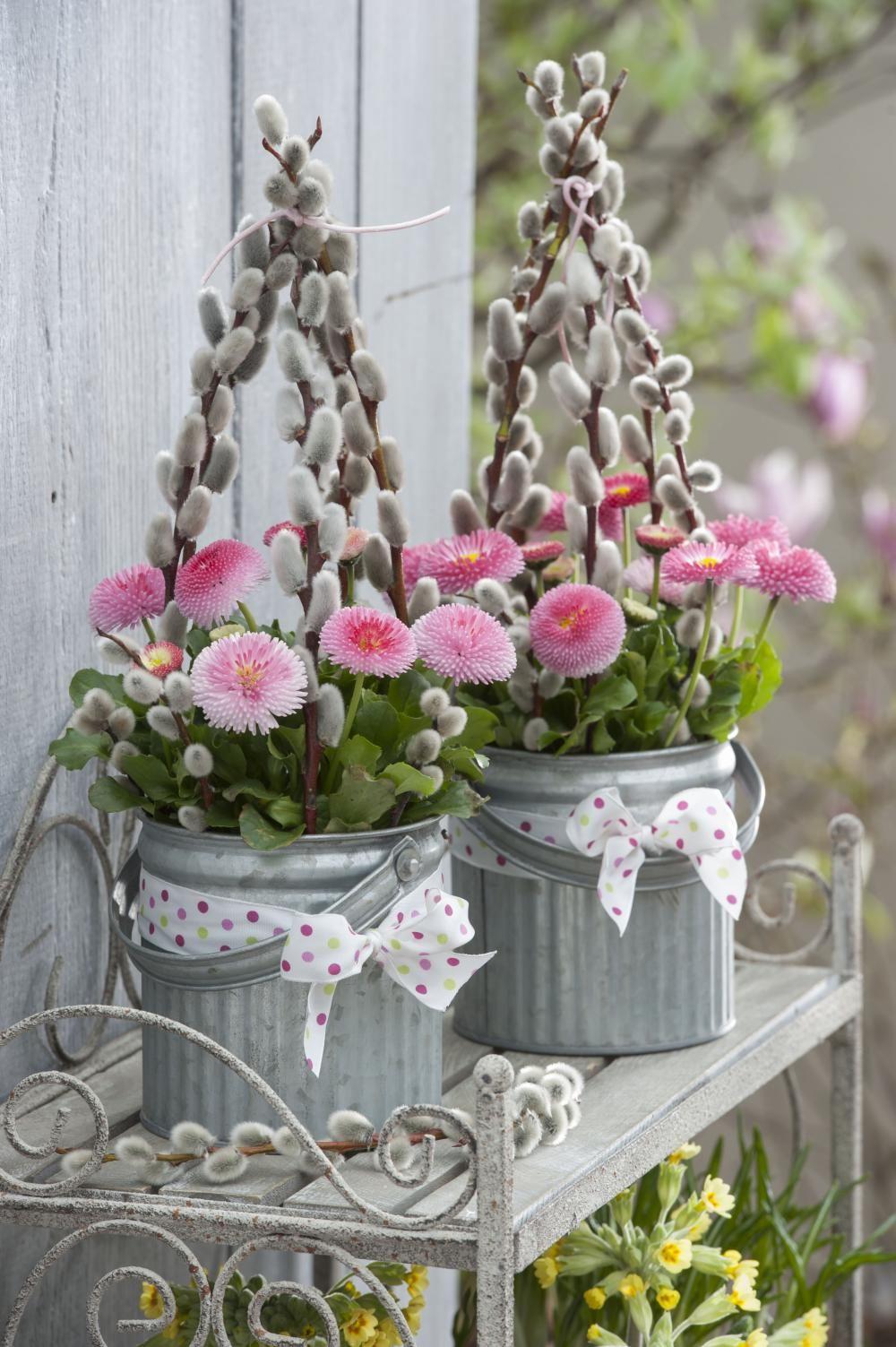 Frühlingsdeko mit Bellis | Frühlings dekoration ...