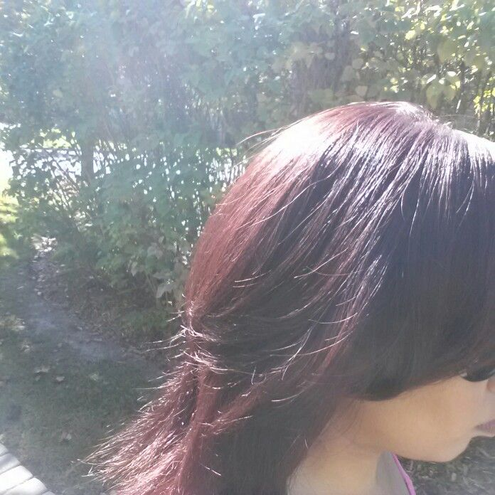Ion Demi Permanent 4RV   Red Violet & Burgundy Hair Color ...