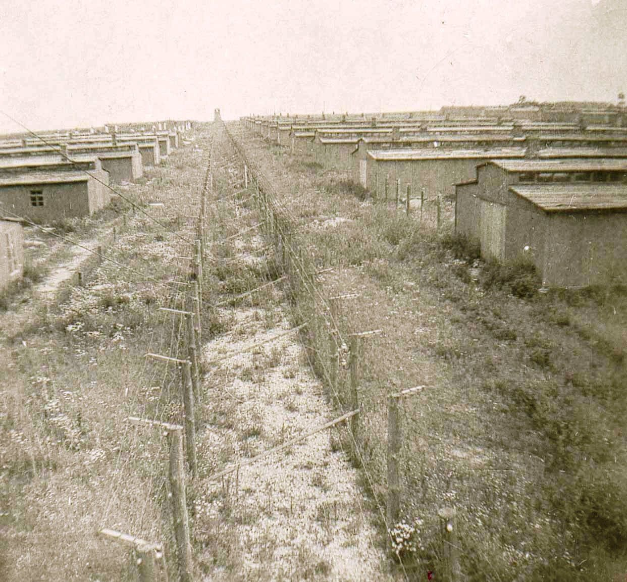 Row of Barracks at Majdanek. Photo taken in 1944 from the watchtower.