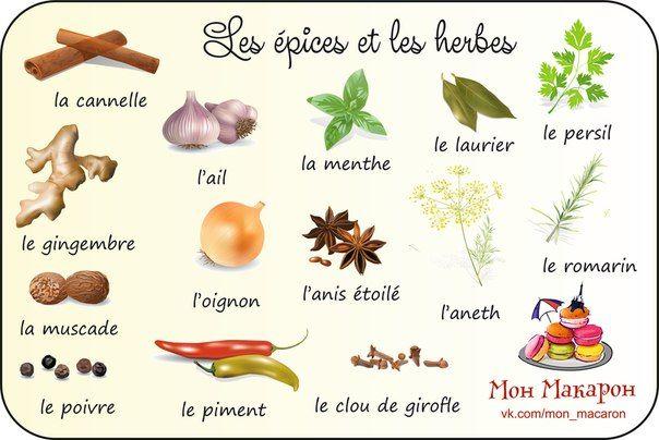 Przyprawy i zioła - słownictwo 1 - Francuski przy kawie