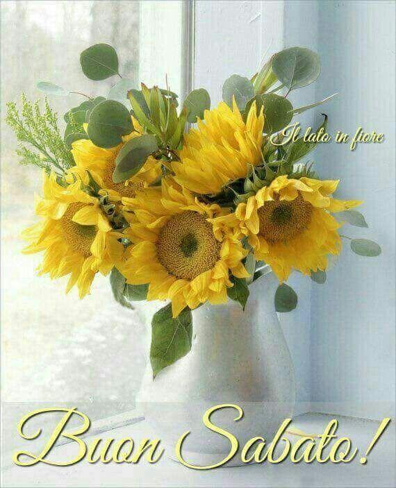 Buon Sabato Girasoli Fiori E Buongiorno Fiori