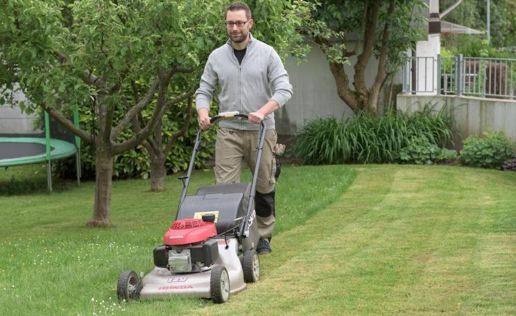 So Erneuern Sie Ihren Rasen Ohne Umgraben Rasen Erneuern Garten Rasen