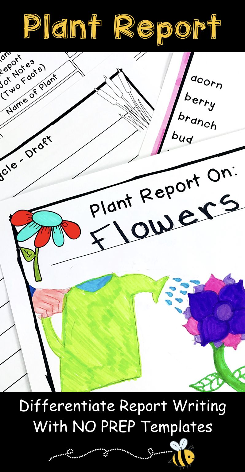 plant research project report writing templates plant report