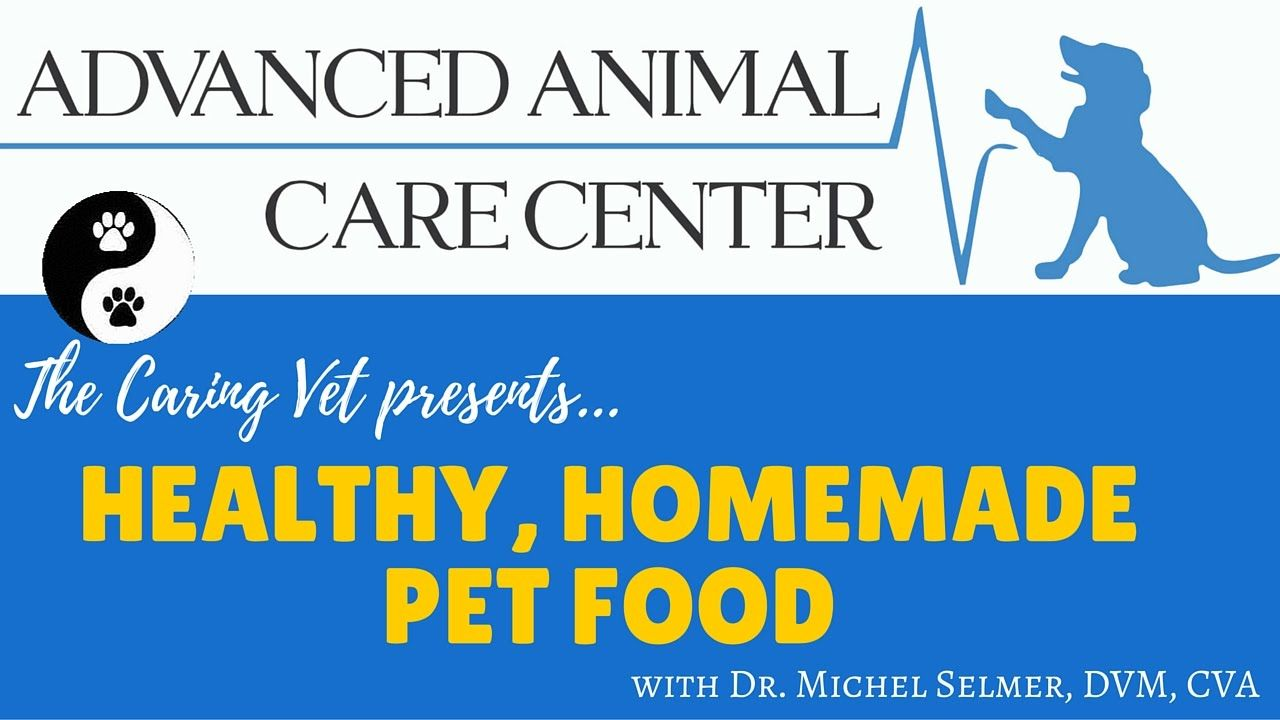 Michel Selmer Dvm Cva Prepares Healthy Homemade Pet Food Food