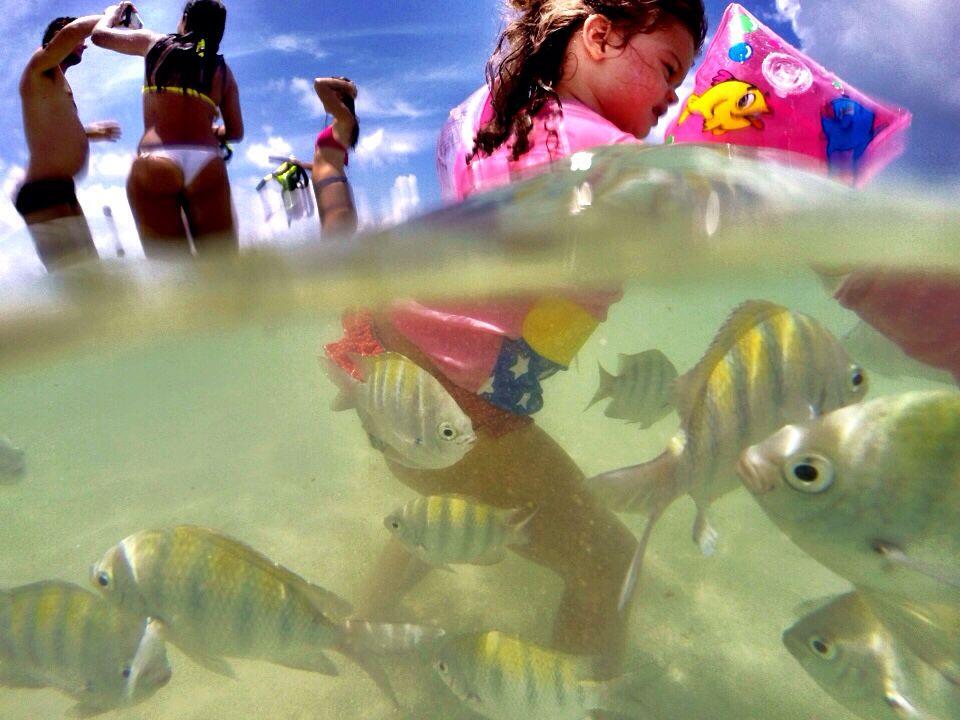 Piscinas naturais de Maragogi / Alagoas #viagememfamilia #maragogi #alagoas #nordeste #crianca #piscinasnaturais