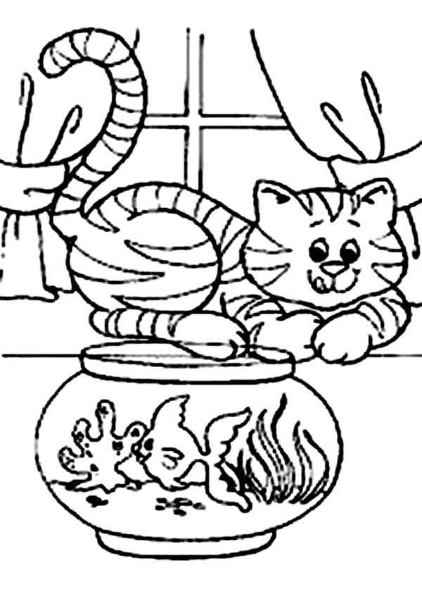 Cat Would Like To Eat The Fish In The Fish Tank Coloring Page Coloring Sun Coloring Pages Fish Tank Drawing Cat Coloring Page
