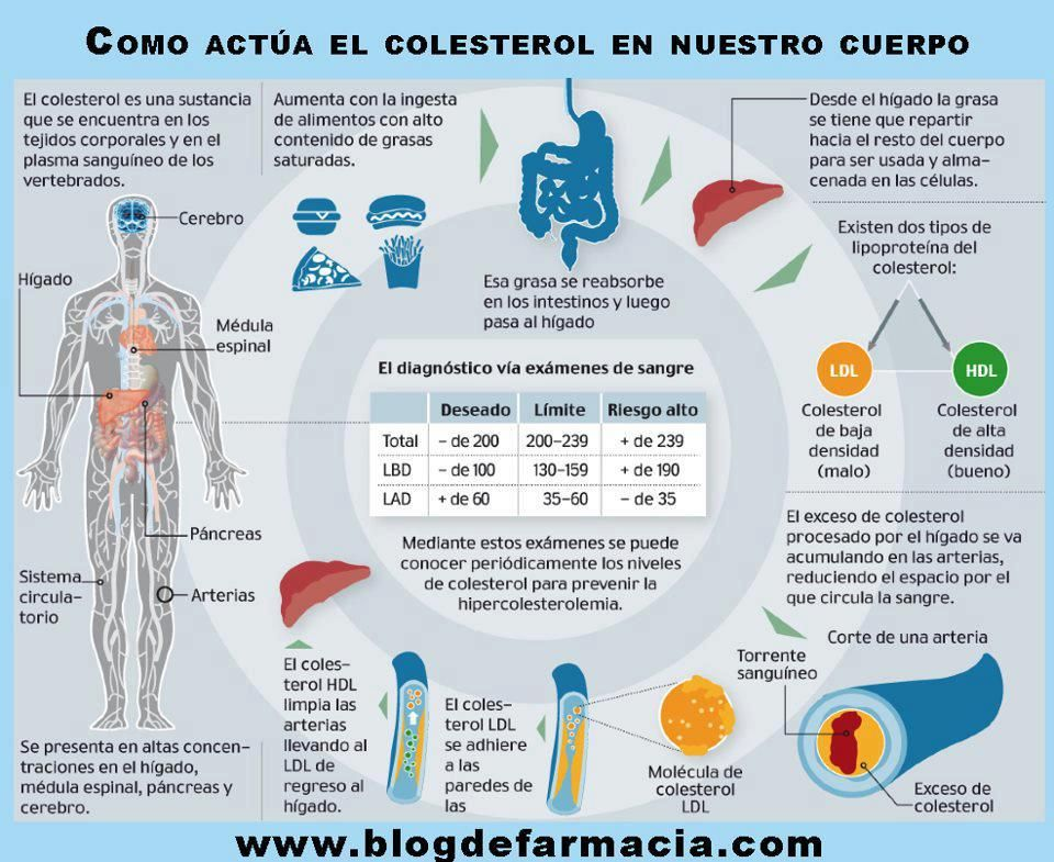 diabetes gestacional con triglicéridos altos