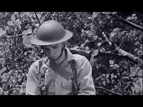 ▶ WW2: Decontamination Procedures - Personal and Areas (1942) - Chlorinated Lime and Mustard Gas Reaction
