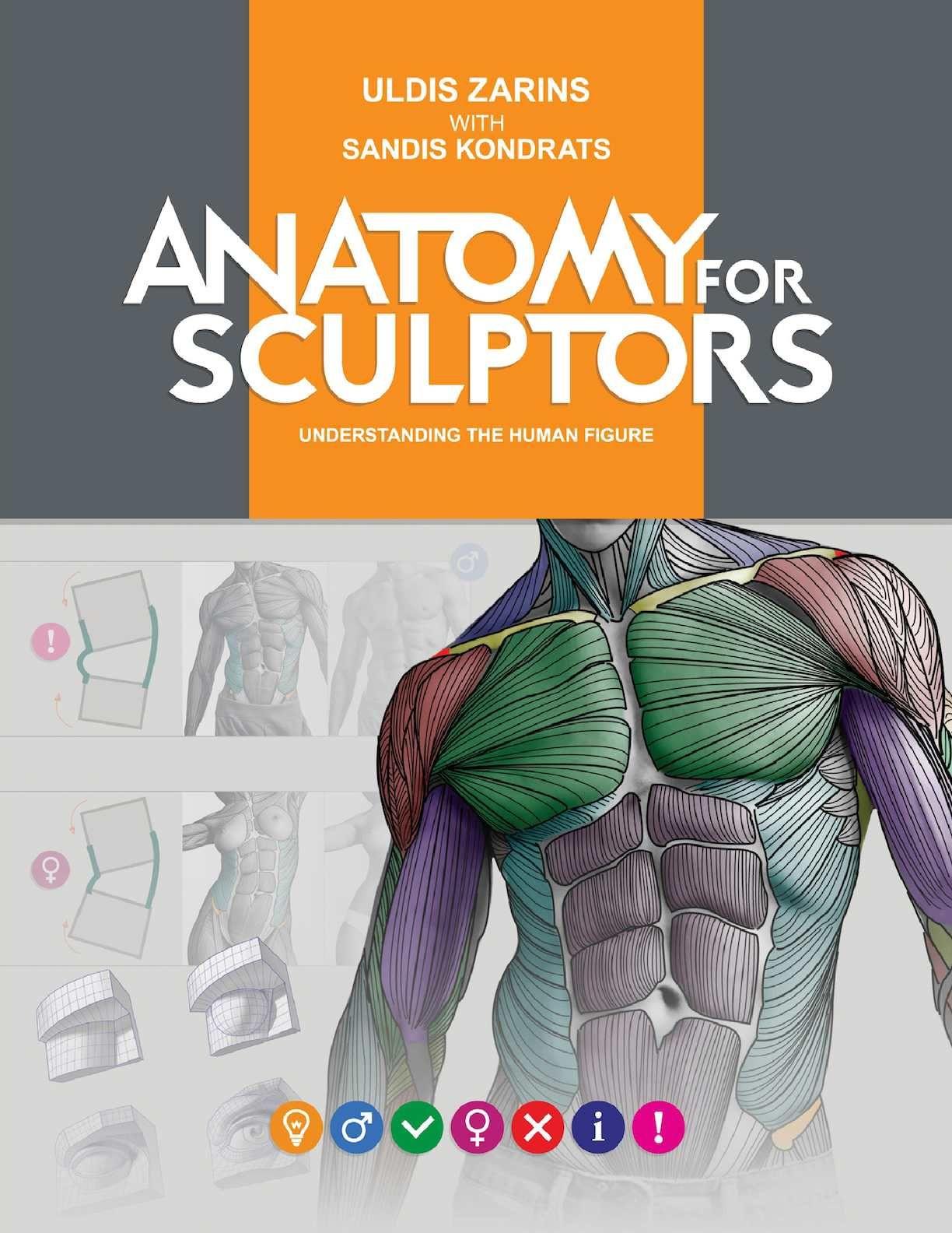 A4s Book Pdf V3 03mar16 92mb Anatomy Digital And Anatomy Drawing