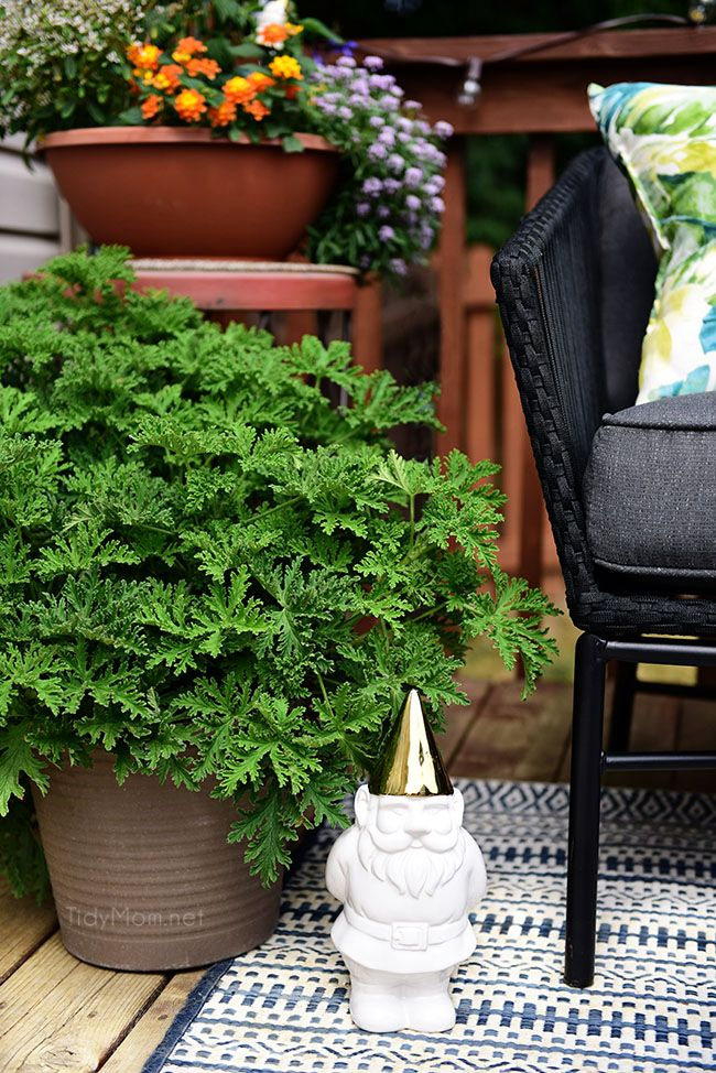 Maximize Outdoor E Learn How To Decorate A Small Deck