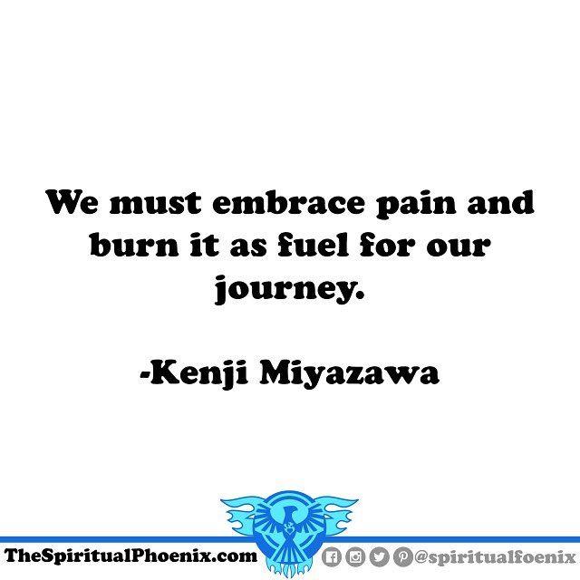 Spirituality Quotes Kenjimiyazawa #philosophy #spirituality #spiritual #quote #quotes .