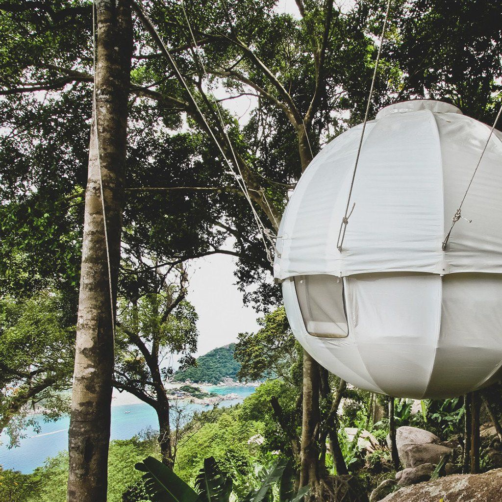 Cocoon Tree House Tree Hanging Tent & Cocoon Tree House: Tree Hanging Tent | Hanging tent House trees ...