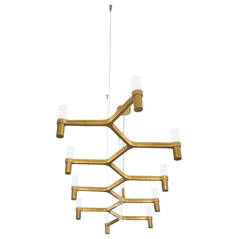 Photo of Nemo Crown Plana Linea Dimmable Pendant Chandeliers by Jehs + Laub