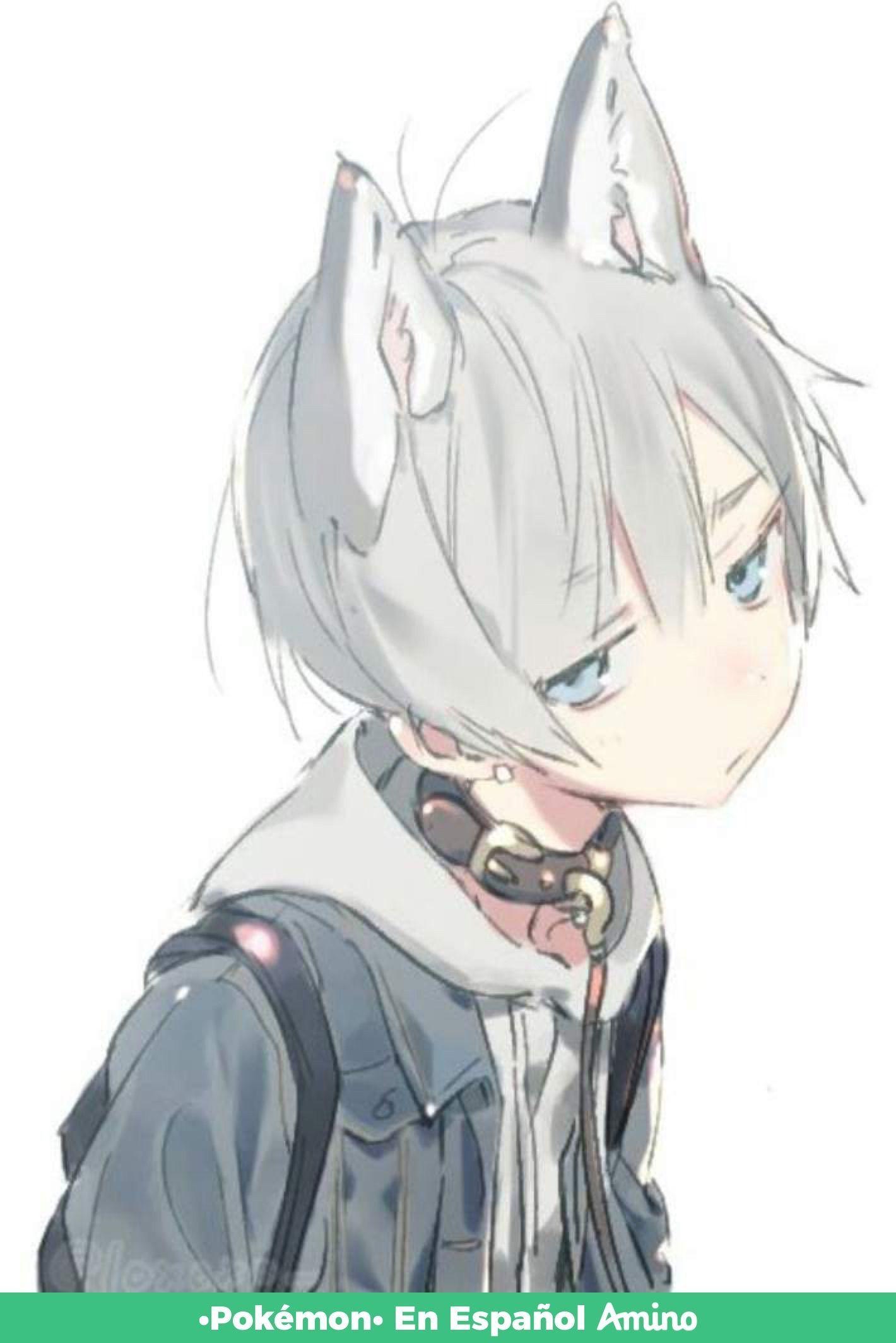 Pin By Amal On Shy Anime Cat Boy Kawaii Anime Anime
