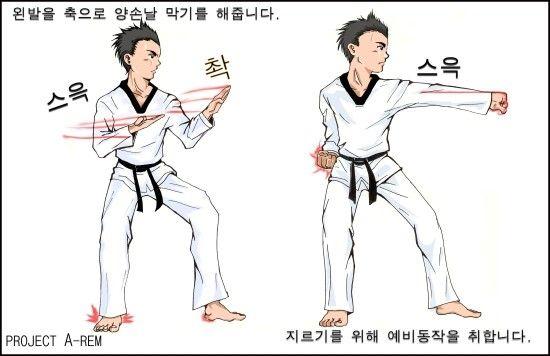 2008년 싸이월드클럽 태사모 태극8장 정모정리 그림 : 네이버 블로그