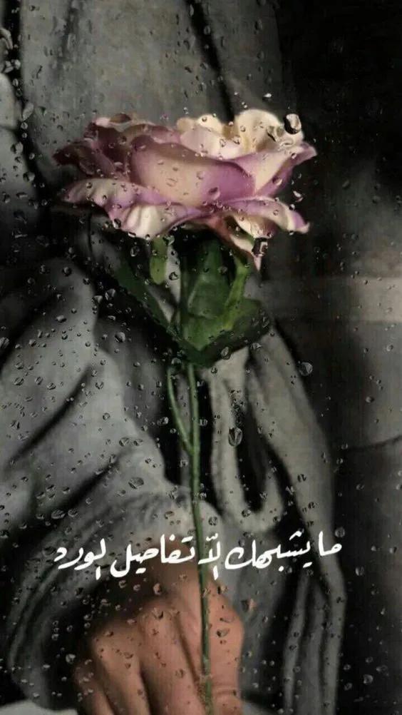 صور مطر مكتوب عليها كلام جميل عن المطر فوتوجرافر Beautiful Quran Quotes Cover Photo Quotes Iphone Wallpaper Quotes Love