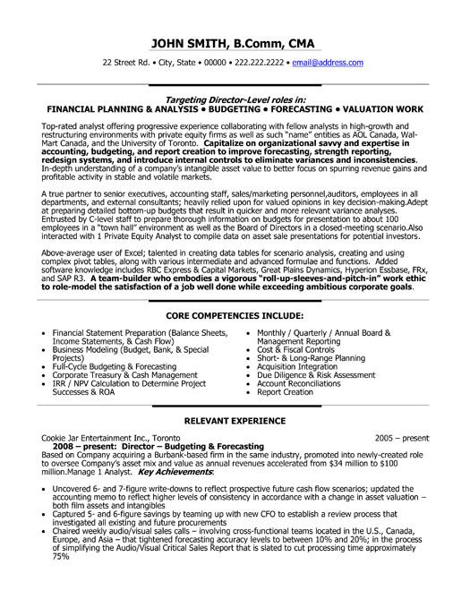 A resume template for a Director of Finance You can download it and