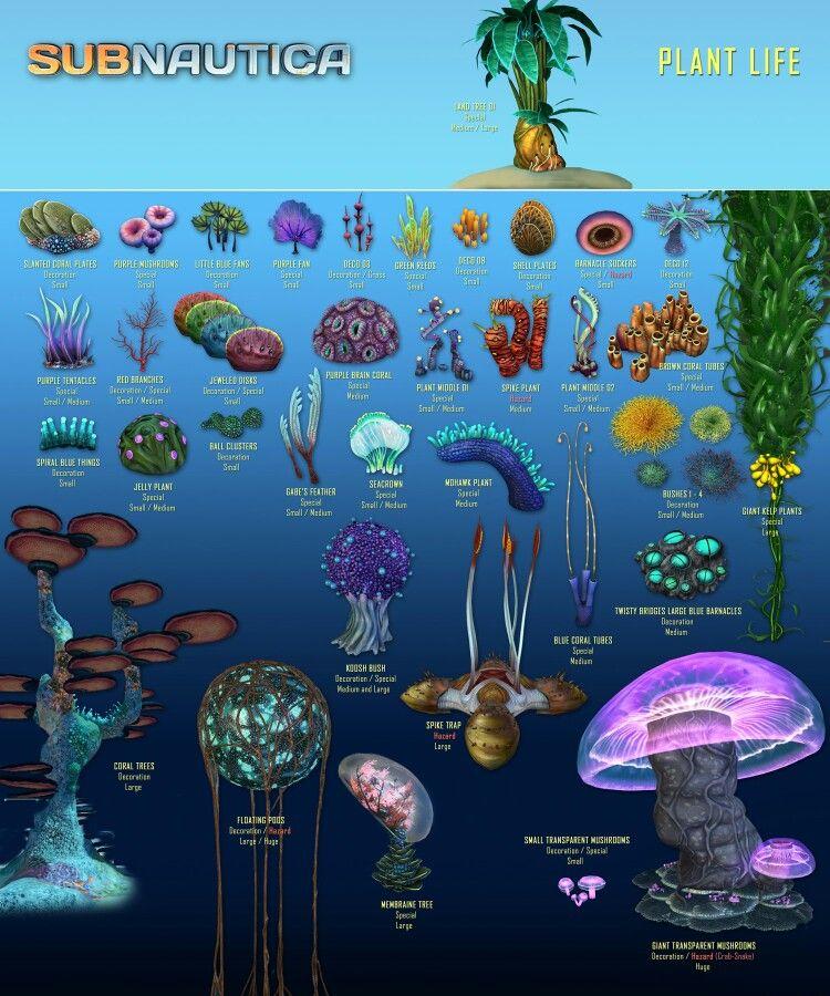 Subnautica Coral Tube Sample : subnautica, coral, sample, Subnautica, Ideas, Concept, Creatures,