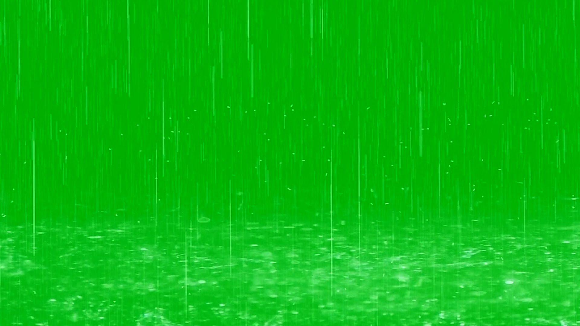 Raindrops Fall in Puddles Green Screen Effect Gambar