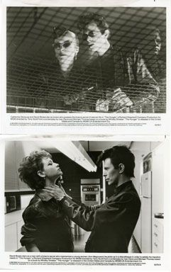 THE HUNGER / DAVID BOWIE / CATHERINE DENEUVE - 2 VINTAGE PUBLICITY STILLS (1983) - Lewis Wayne Gallery https://www.lewiswaynegallery.com/realized_prices/view/4994