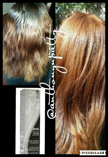 wella tango haircolor 8nn cappuccino  beautiful results