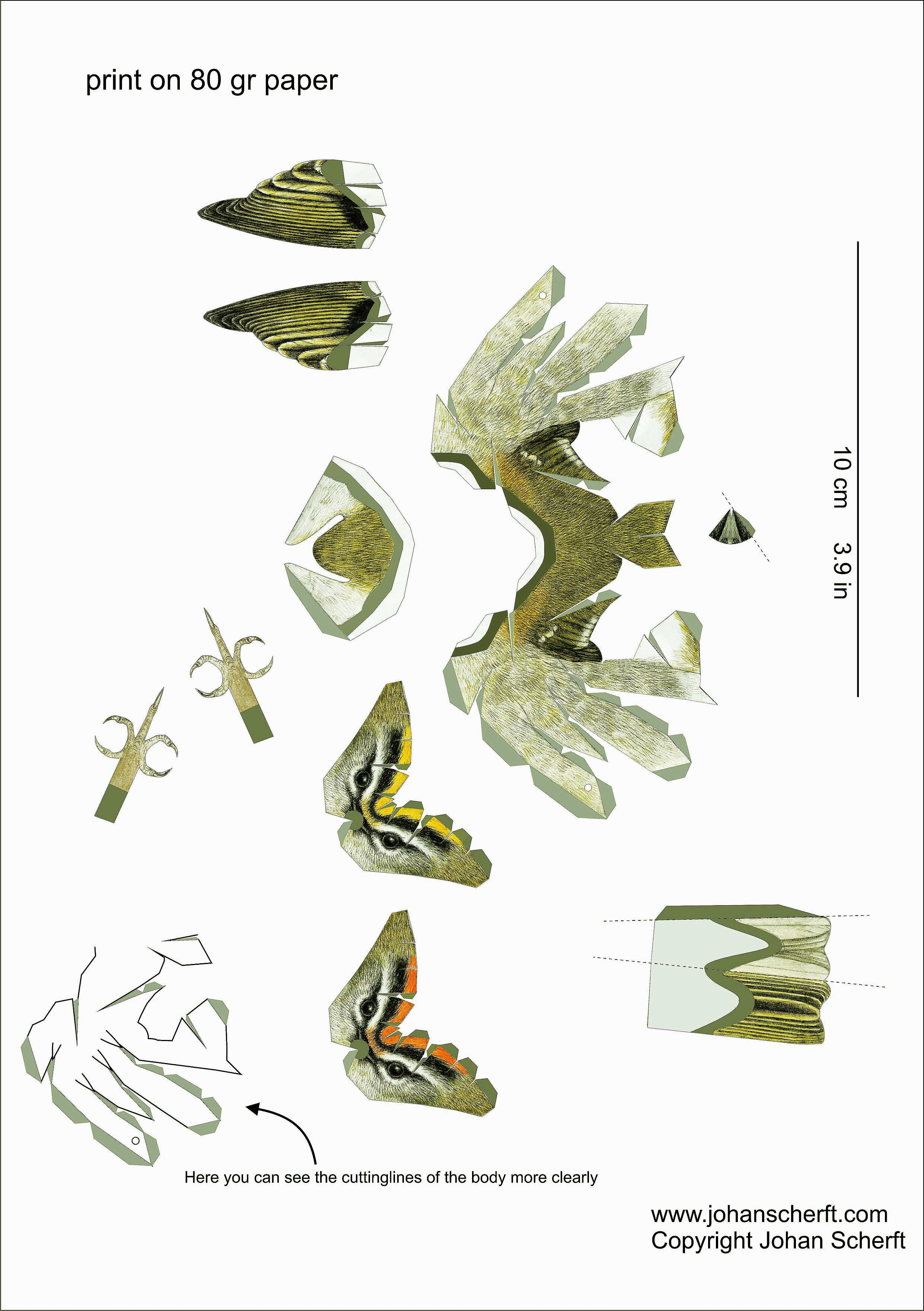 templatefirecrest Sketches of things Pinterest
