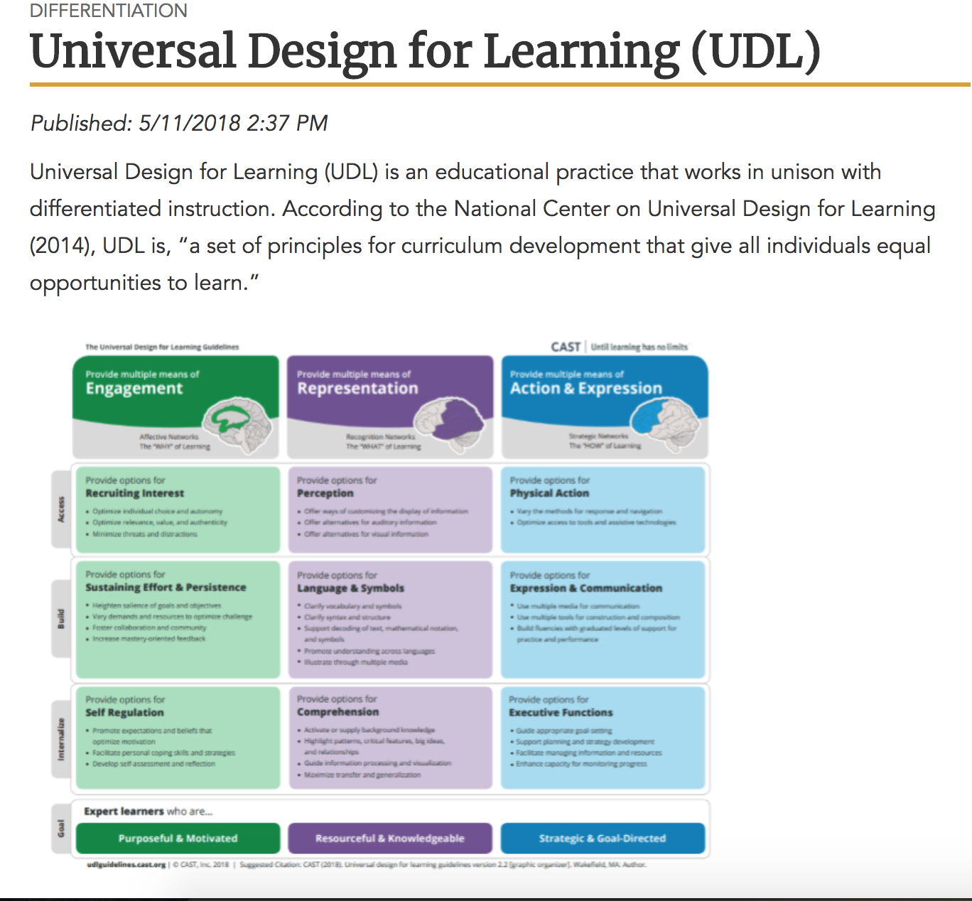 This Graphic Organizer Was Posted By The Kentucky Department Of Education It Addresses The Three Di Universal Design Curriculum Development Types Of Learners
