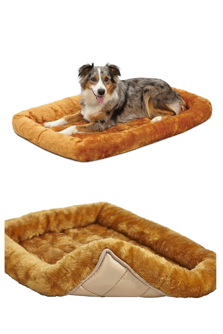Midwest Deluxe Bolster Pet Bed For Dogs Cats Dog Beds Amazon