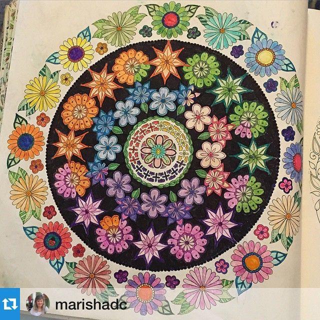 Iconosquare Instagram Facebook Analytics And Management Platform Secret Garden BookSecret