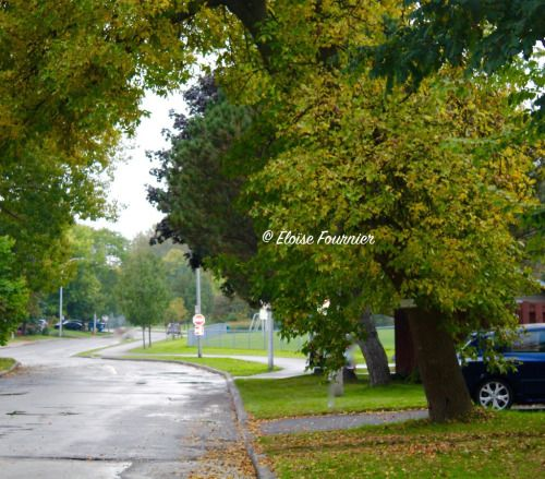 When the Rain Stops Pointe-Claire, QC September 2015
