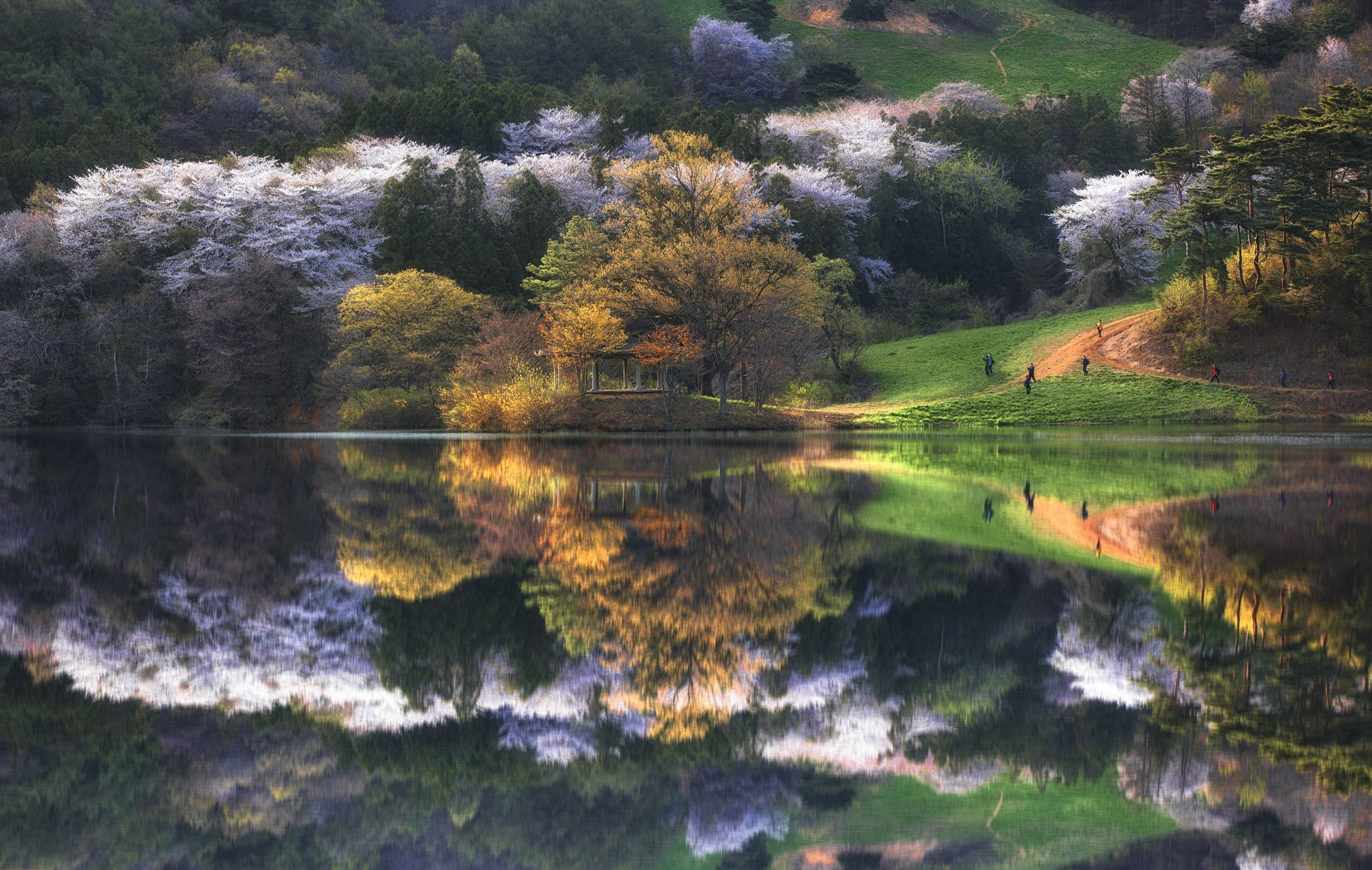 Spring In Yongbi Lake S Korea X By Jae Youn Ryu - The beauty of south korea captured in stunning reflective landscape photography