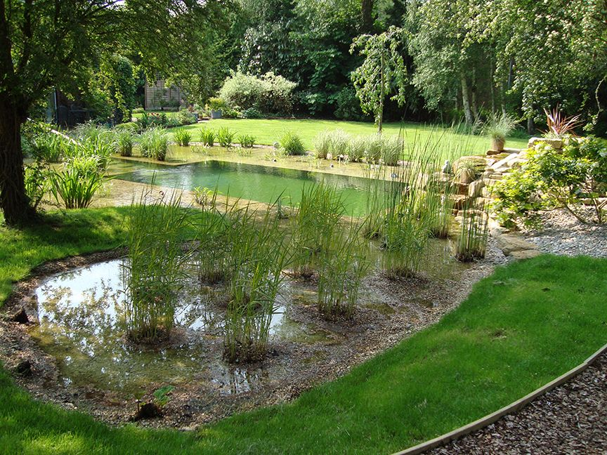 Building a natural swimming pond cornwall pond for Natural garden pond design