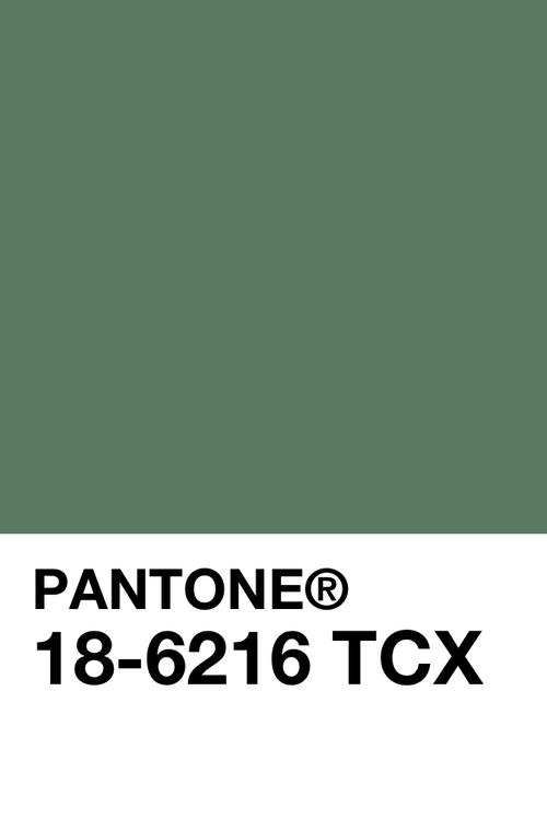 Cartucho palette | Pantone | Pantone, Pantone color, Color