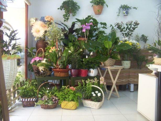 Protege tus plantas del fr o macetas y jardines peque os for Jardines para espacios pequenos