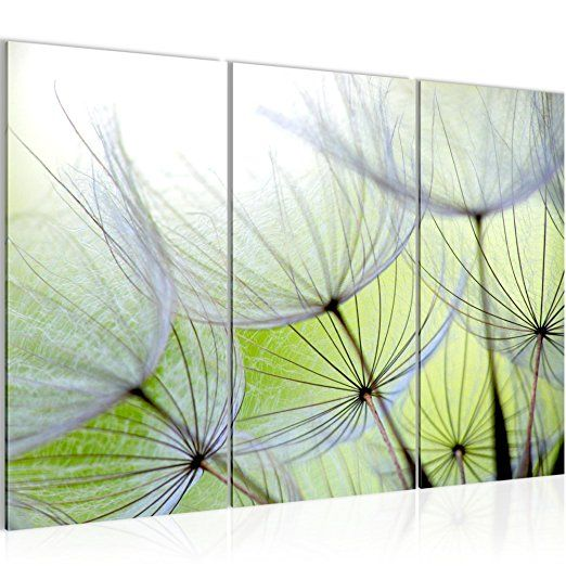 Bilder Blumen Pusteblume Wandbild 120 x 80 cm Vlies - Bilder Blumen
