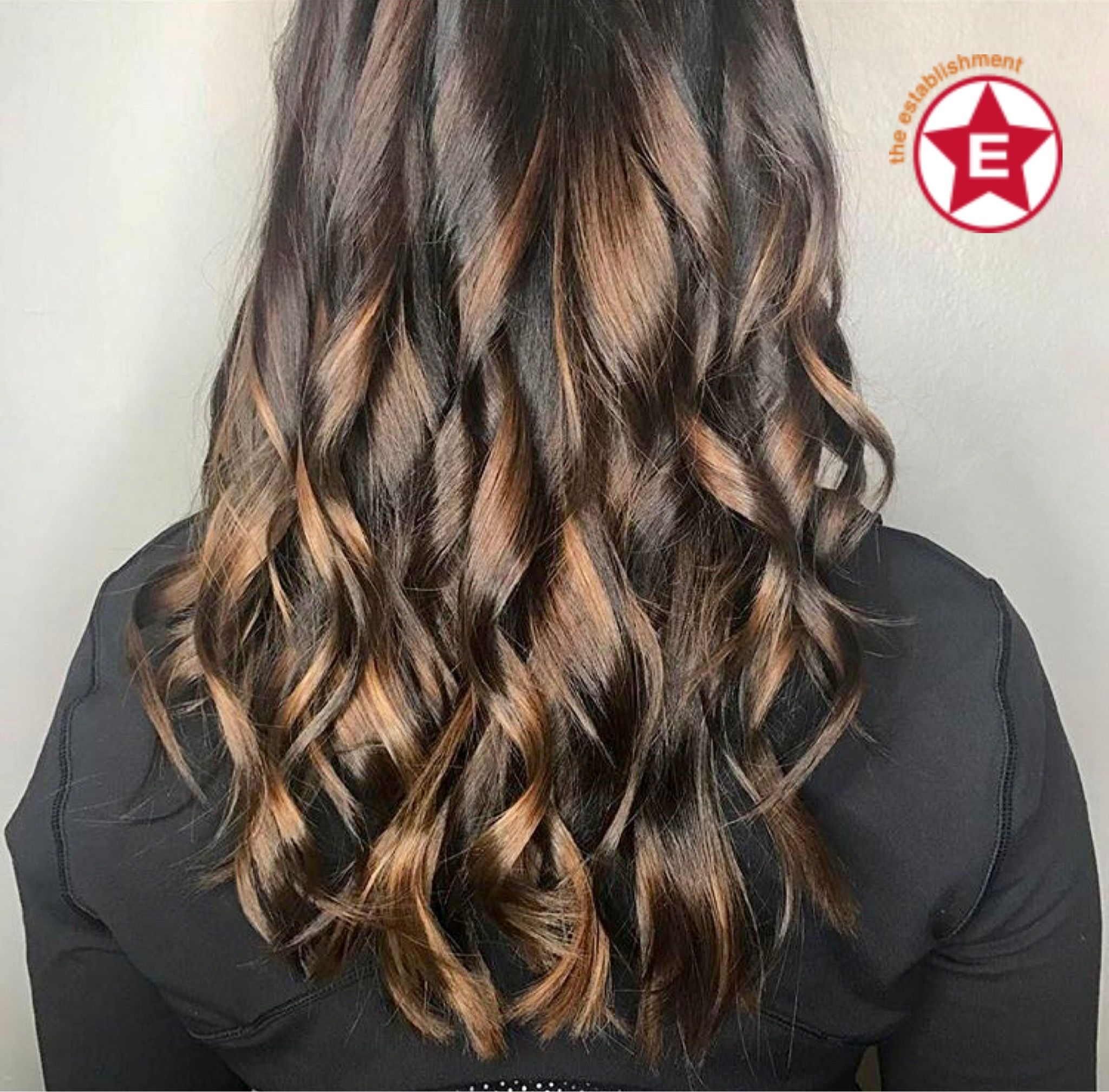 Dark Toned Aveda Balayage By Steph At The Establishment In Milwaukee Long Hair Styles Hair Styles Balayage