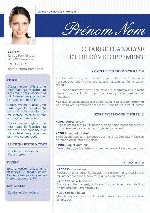 exemple cv consultant decisionnel