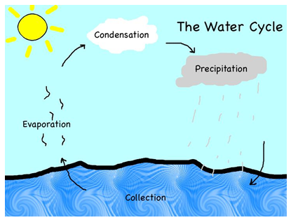 Essay on water cycle for kids