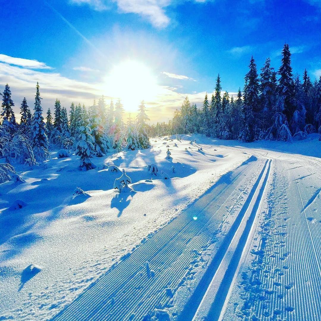 Norway   Snow   Pinterest   Winter, Norwegen und Skandinavien