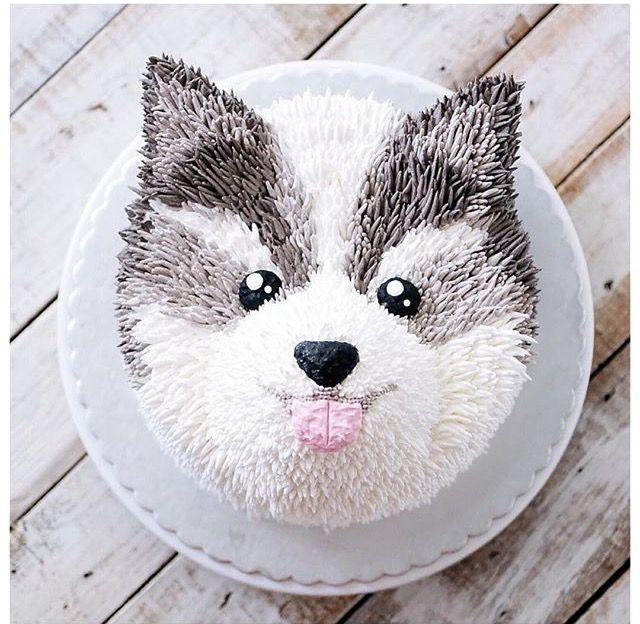 Husky Cake Animal Cakes Birthday Cute Beautiful