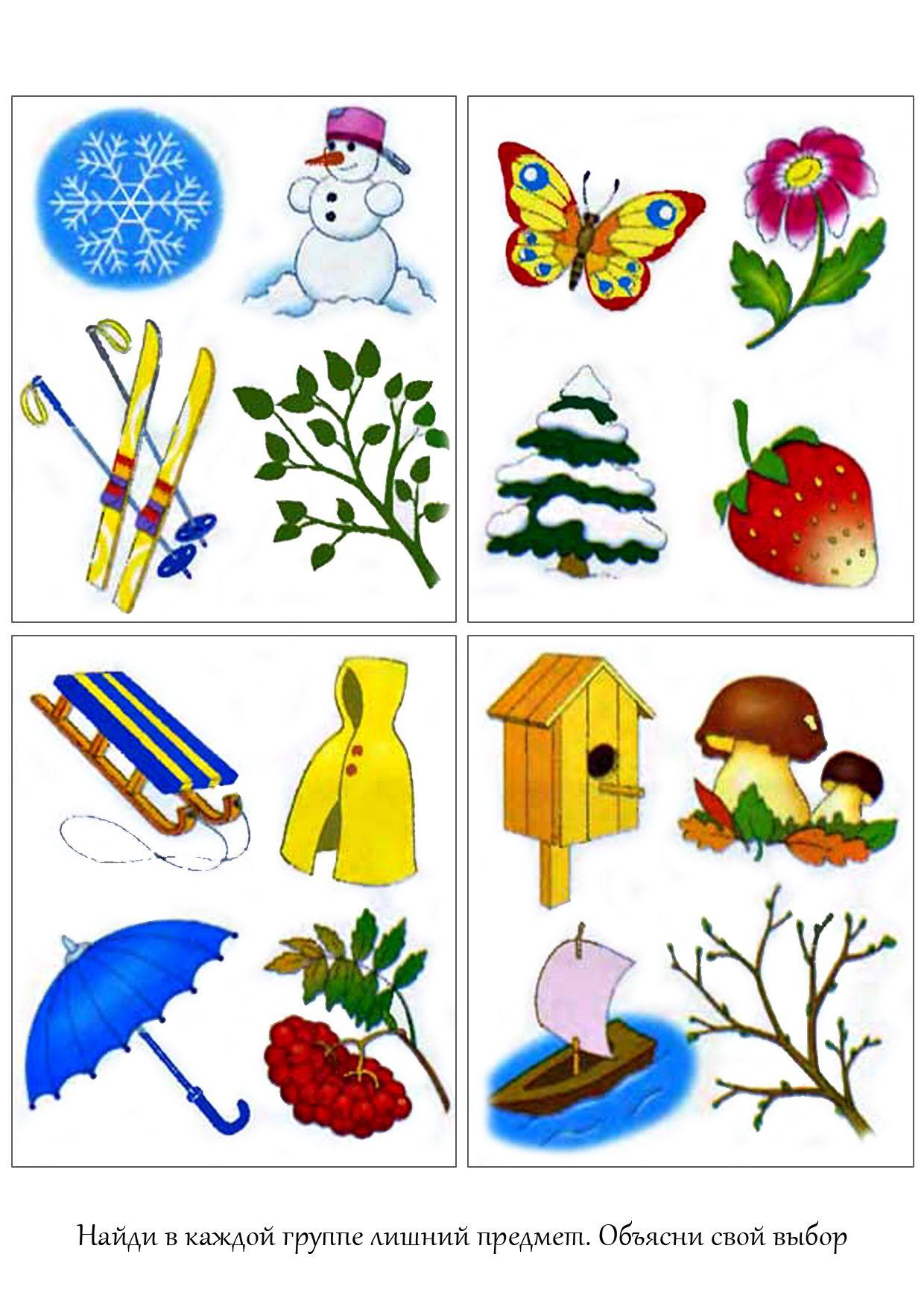 Название всех садовых цветов с картинками